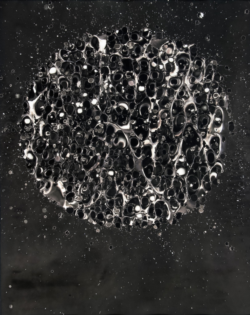 Artifact #1610 Gelatin silver print (photogram)  20x16 inches 2013